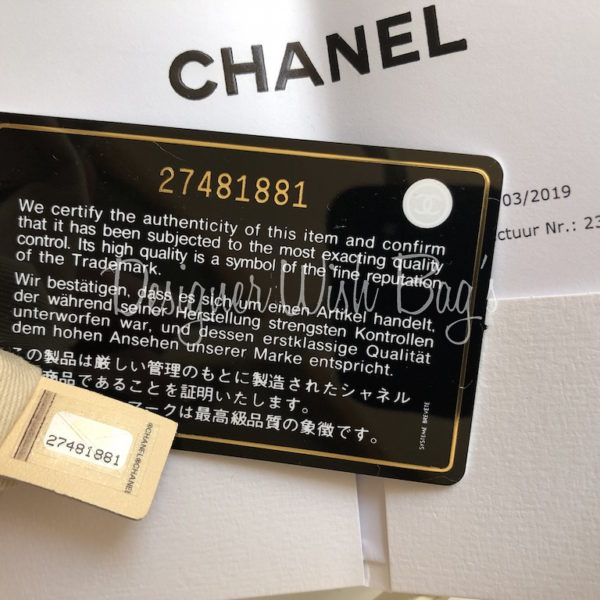 c84cc48263b5f9 Chanel Deauville Beige/Gold 19C. IMG_8285